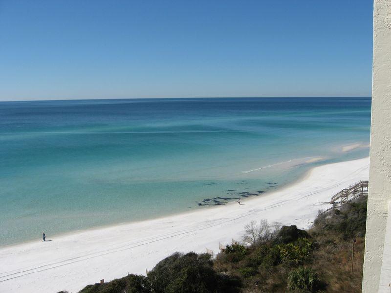 Florida 09 093